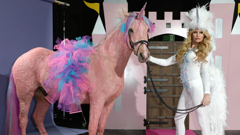 KLEDDE UT SEG SELV - OG HESTEN: Katie Price er kjent for å overraske, og det var intet unntak da hun dukket opp på fotoshoot utkledd som en enhjørning og med en rosafarget hest.  Foto: Pa Photos