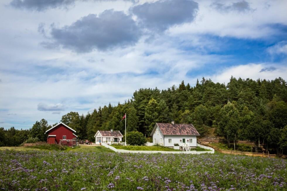 ÅRETS GÅRD: Det er på denne gården like ved svenskegrensa årets 14 deltakere kjemper om den gjeve førsteplassen i 2016-utgaven av «Farmen».  Foto: Espen Solli/ TV 2