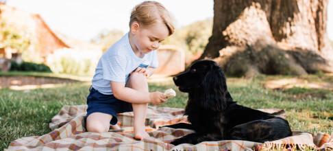 Dette bildet av prins George vekker harme
