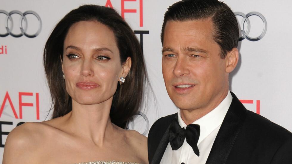 DYRE VANER: Mens Angelina Jolie vil fokusere på sitt veldedige arbeid, skal Brad Pitts kunstinteresse tømme familiebudsjettet.  Foto: Splash News