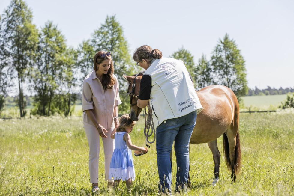 FØRSTE MØTE: Den sommerkledde toåringen fikk den brune og flotte hesten som dåpsgave da hun ble døpt i 2014. Her sammen med mamma prinsesse Madeleine (t.v).  Foto: TT NYHETSBYRÅN