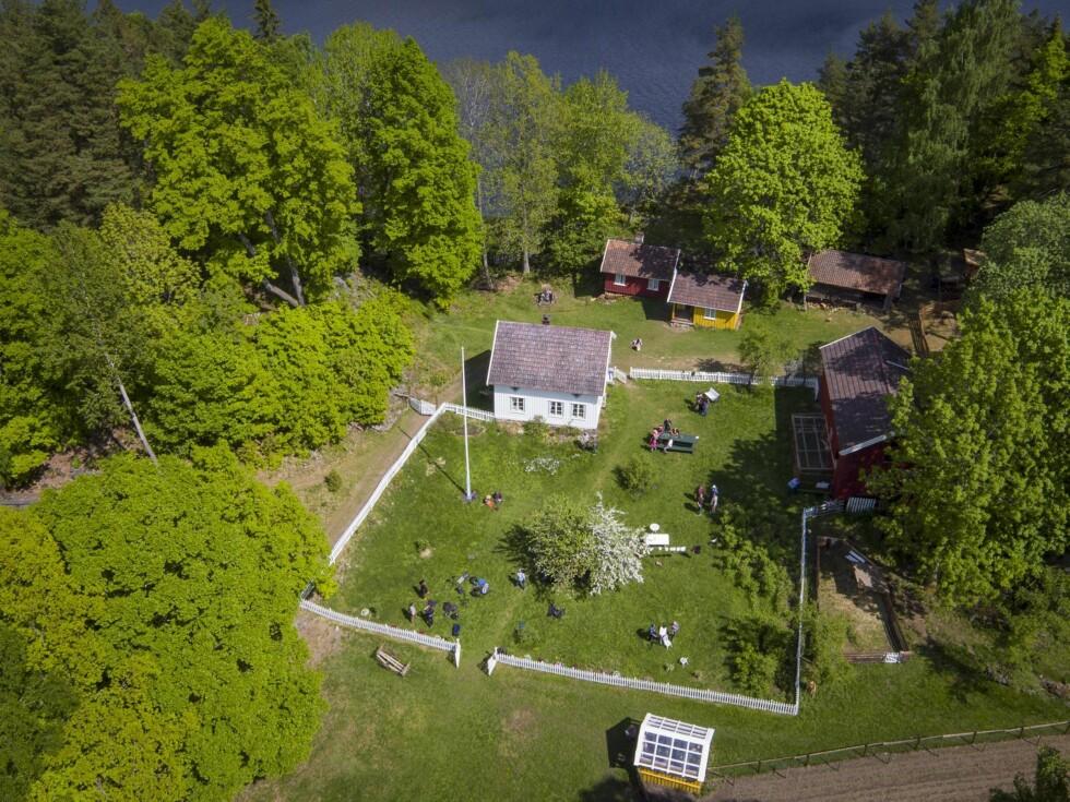 IDYLL: Kjendis-utgaven av «Farmen» spilles inn på  Storøy gård i Bamble. Foto: Tor Lindseth