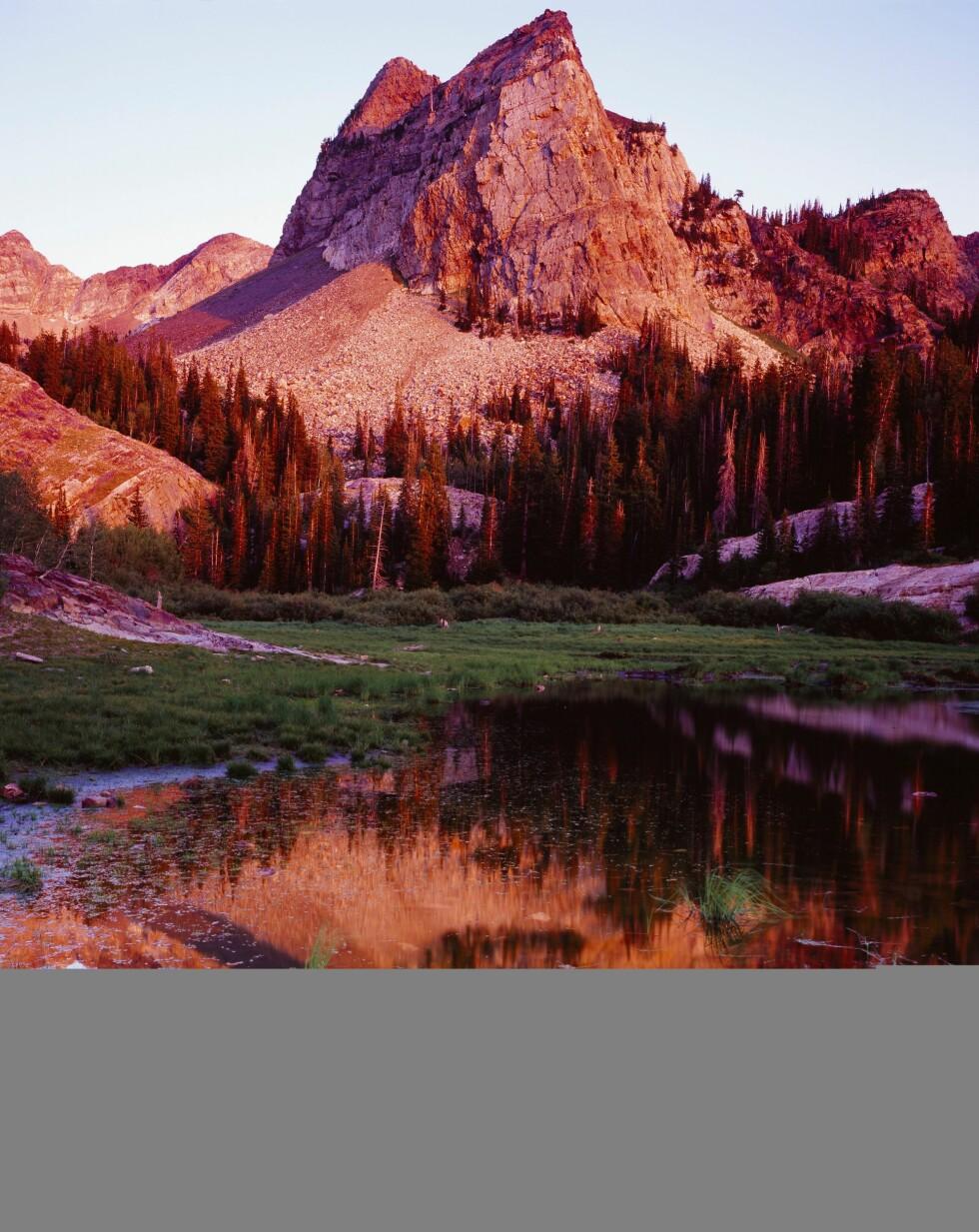 INSPIRERENDE: Fjellet Sundial Peak speiler seg i Lake Blanche i Big Cottonwood Canyon. Kanskje noen av stjernene kobler av i dette området under filmfestivalen? Foto: (c) Fred Hirschmann/Science Faction/Corbis/All Over Press