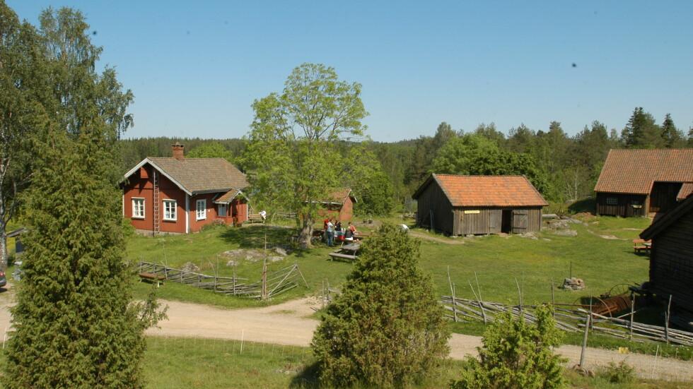 TIL SALGS: Aremark kommune trenger penger. Det betyr at gården Bøensætre, der Farmen ble spilt inn i 2008, kan bli din. Foto: TV 2