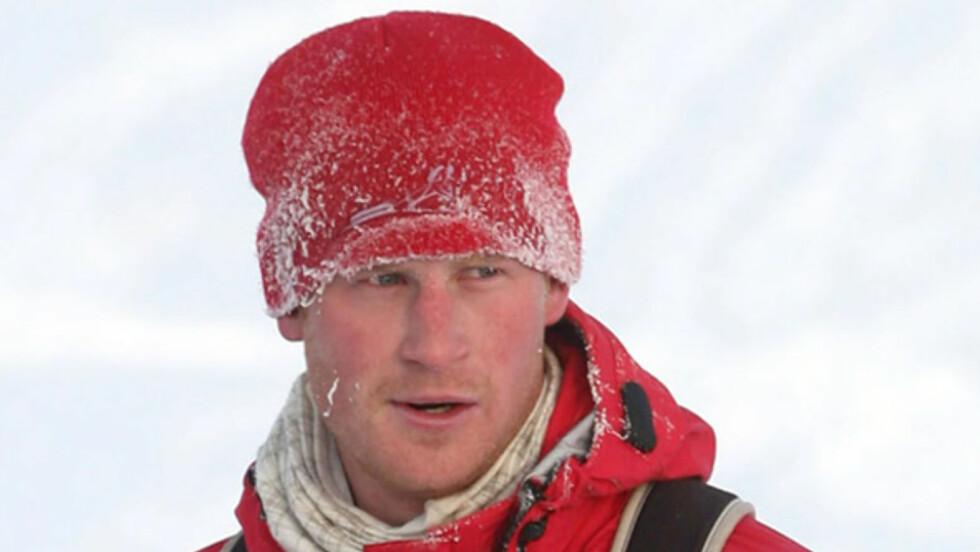 SPREK PRINS: Prins Harry gikk til Nordpolen for to år siden. Foto: All Over Press