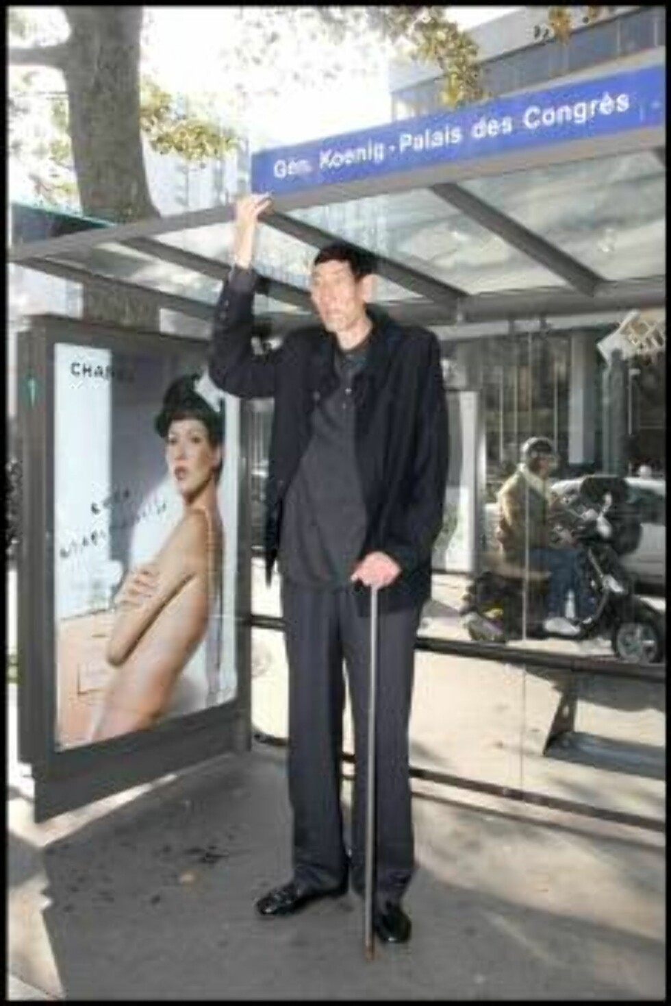 PARIS 2006-10-10.  TALLEST MAN IN THE WORLD VISITING PARIS. XI SHUN IS CHINESE, HE' S 2,36 m. TALL, WEIGHS 117 KG  AND EATS 1 KG OF RICE EACH DAY. HE IS NOW IN THE GUINNESS BOOK OF RECORDS 2007.  Photo: Jean-Marc Haedrich/Visual Code: 4050  COPYRIGHT STEL Foto: Stella Pictures