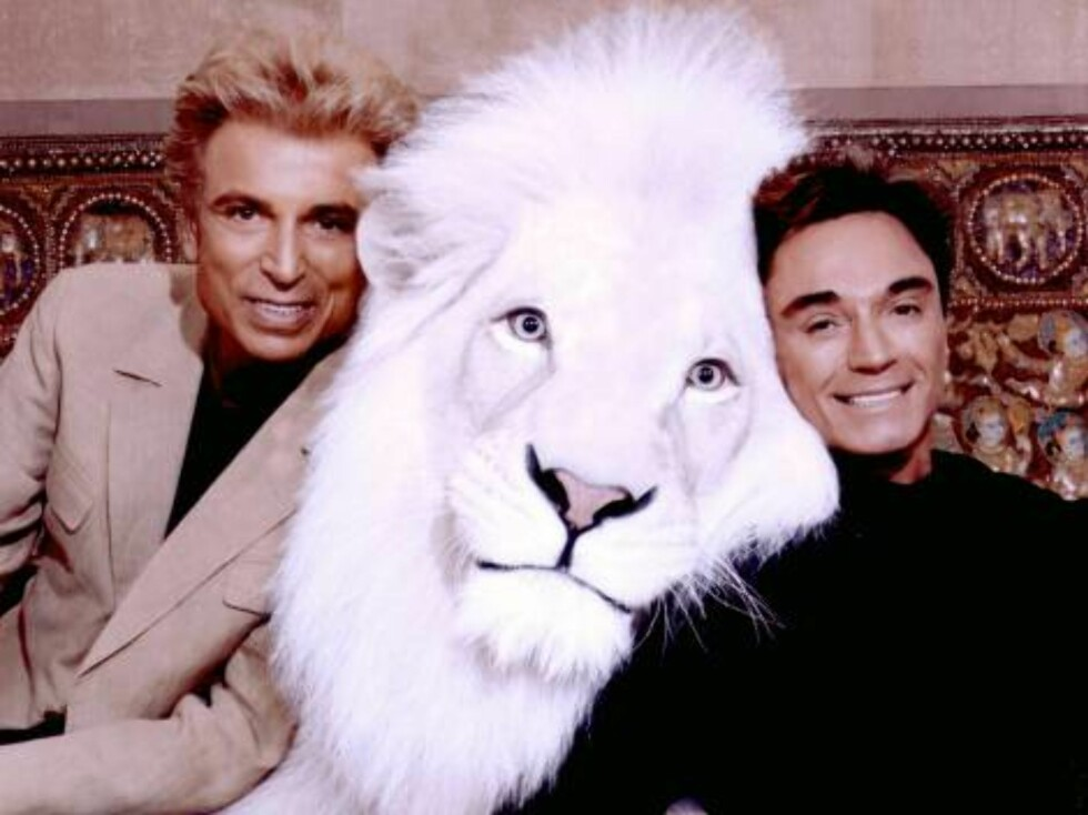 LAS VEGAS - UNDATED:  In this handout image provided by the Mirage Resort, Siegfried (L) & Roy pose with Pride, a white lion in this undated photo. Horn, 59-years-old, was mauled and critically injured by a white tiger while performing onstage at the Mira Foto: All Over Press