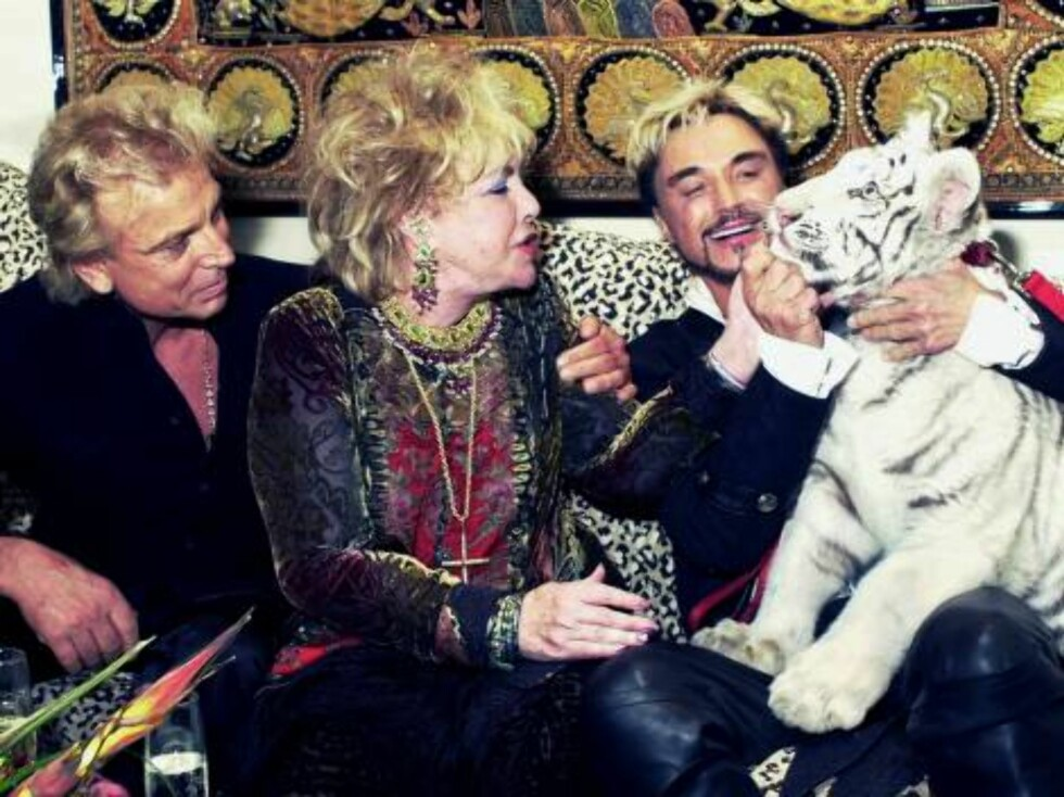 399133 02:  Actress Elizabeth Taylor (C) goes eye to eye as she pets Atlas, a five-month-old white Siberian tiger with entertainers Siegfried (L) and Roy following their show at the Mirage Hotel and Casino December 31, 2001 in Las Vegas, NV.  (Photo by Je Foto: All Over Press