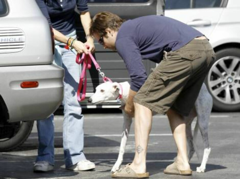 X-Files star David Duchovny and Tea Leoni carrying their new dog, a greyhound into theit electric car Oct 22, 2006 X17agency EXCLUSIVE Foto: All Over Press