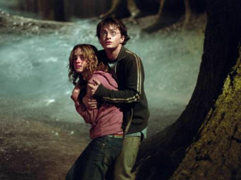 STUNTMANN: David Holmes har fungert som Daniel Radcliffes stuntmann gjennom alle Harry Potter-filmene. Foto: Photo: Murray Close