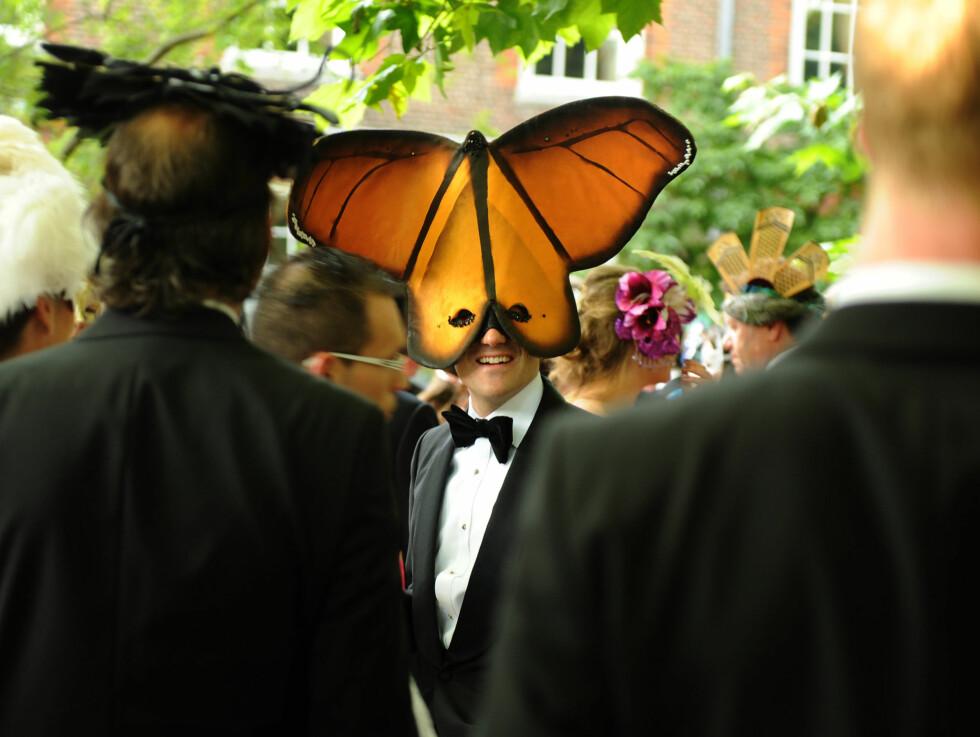 ORIGINALT: Omtrent samtlige av gjestene på «Elephant Family»-festen var iført masker som forestilte ulike dyr og insekter. Organisasjonen jobber for å forhindre at den indiske elefanten blir utryddet i villmarken. Foto: All Over Press
