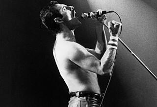 Kan ha oppdaget Freddie Mercurys siste hvilested