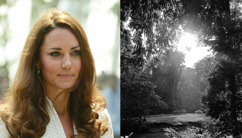 AMATØRFOTOGRAF: For første gang publiserer Kate sine egne private bilder.