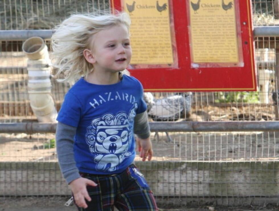 AKTIV TREÅRING: Vesle Zuma hadde mye å finne på i lekeparken. Foto: Stella Pictures