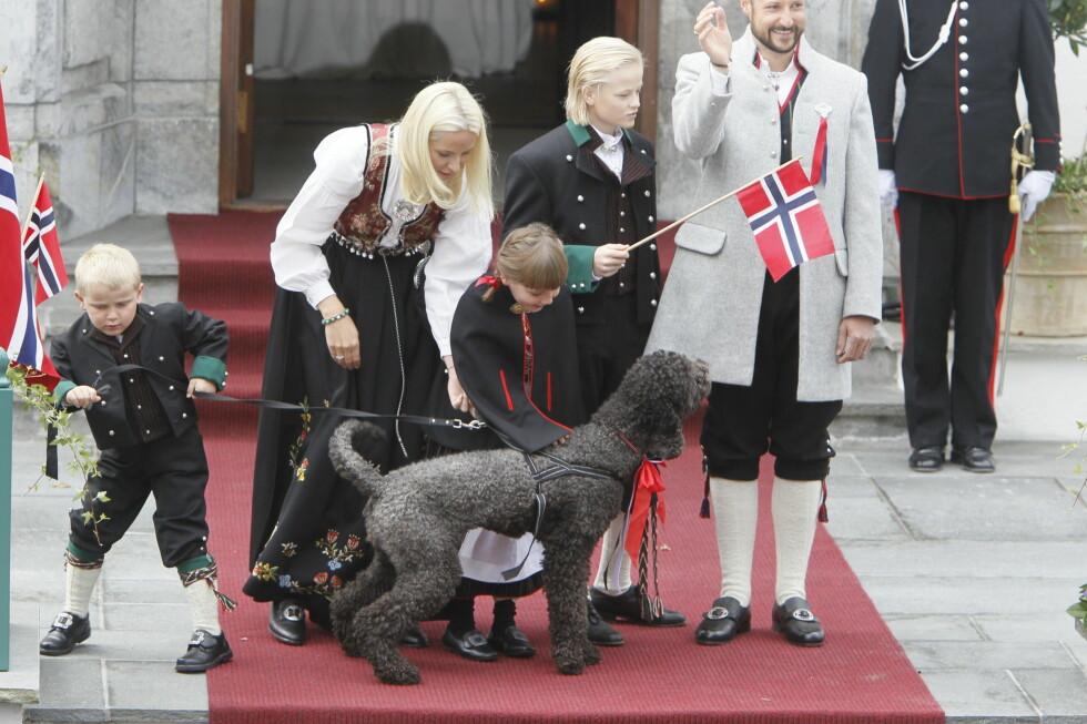 KJÆLEDEGGE: Kronprinsfamiliens hund Milly Kakao, ble midtpunktet da kronprinsfamilien møtte Askers innbyggere på Skaugum 17. mai. Foto: Scanpix