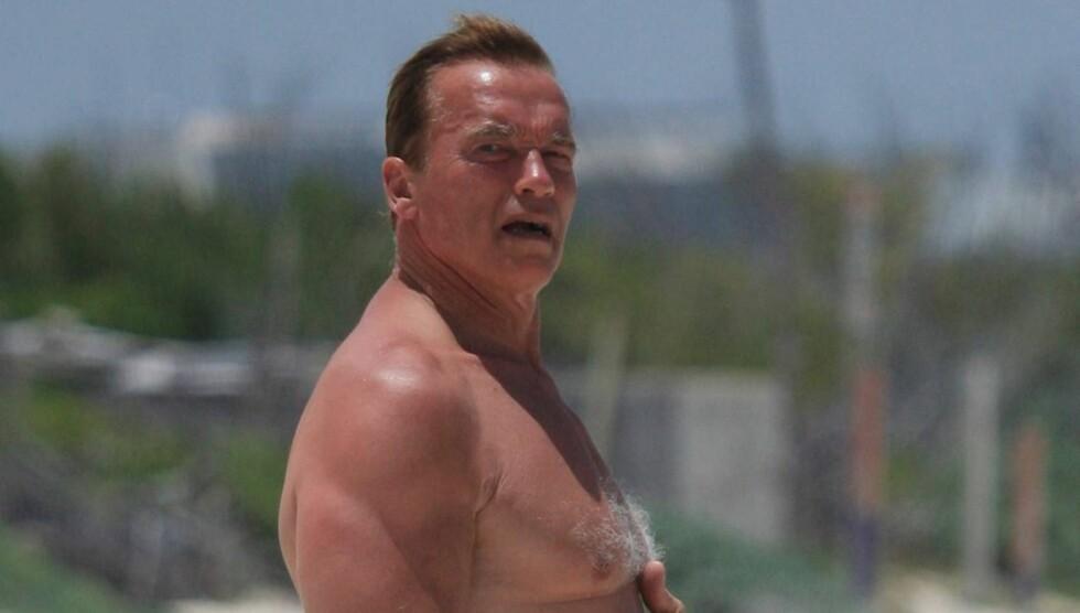 GJØR COMEBACK: De siste årene har Arnold Schwarzenegger vært guvernør i California. Nå har han planer om å gjøre comeback i Hollywood og leser for tiden tre mulige manuskripter.  Foto: Stella Pictures