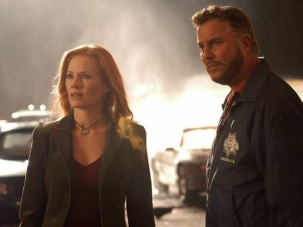 """TV-SUKSESS: """"CSI"""", med Marg Helgenberger og William Peterson, i hovedrollene, har millioner av fans verden over. Foto: TVNorge"""