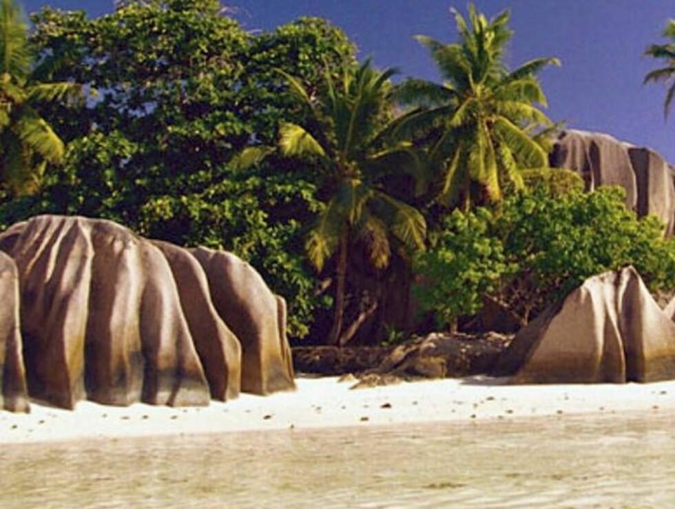 Seychellene... Foto: www.paradisreiser.no