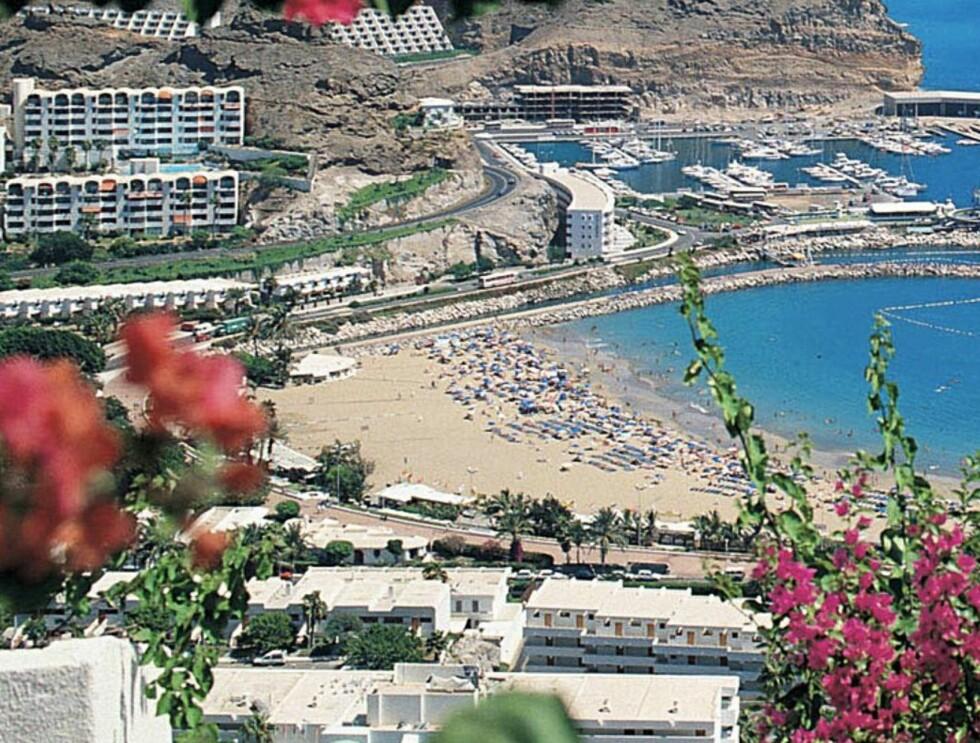 VINLAND: Ja, det lages overraskende mye god vin på Gran Canaria. Foto: Star Tour