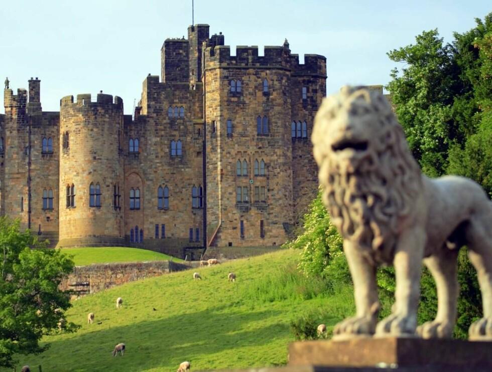 """KJENT KULISSE: Alnwick Castle har vært brukt i flere store filmer, som """"Robin Hood: Tyvenes prins"""" og de to første Harry Potter-filmene. Foto: britainonview/ Pawel Libera"""