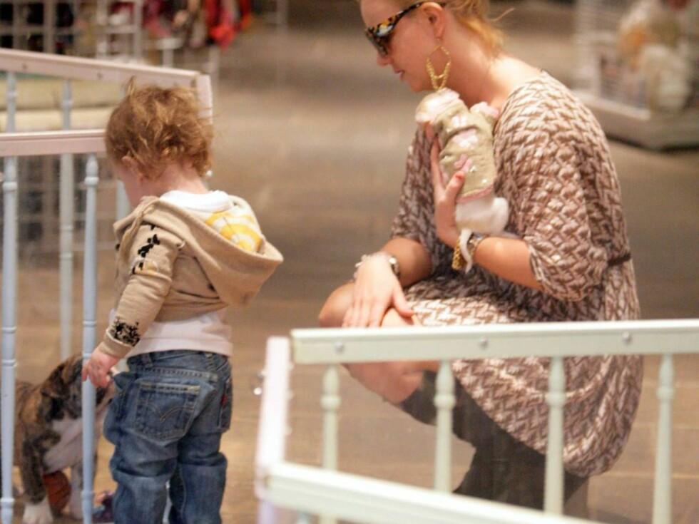 STOLT MOR: Britney var fra seg av begeistring over sønnens spasertur, mens Sean Preston var mest opptatt av hundevalpene i dyrebutikken... Foto: All Over Press
