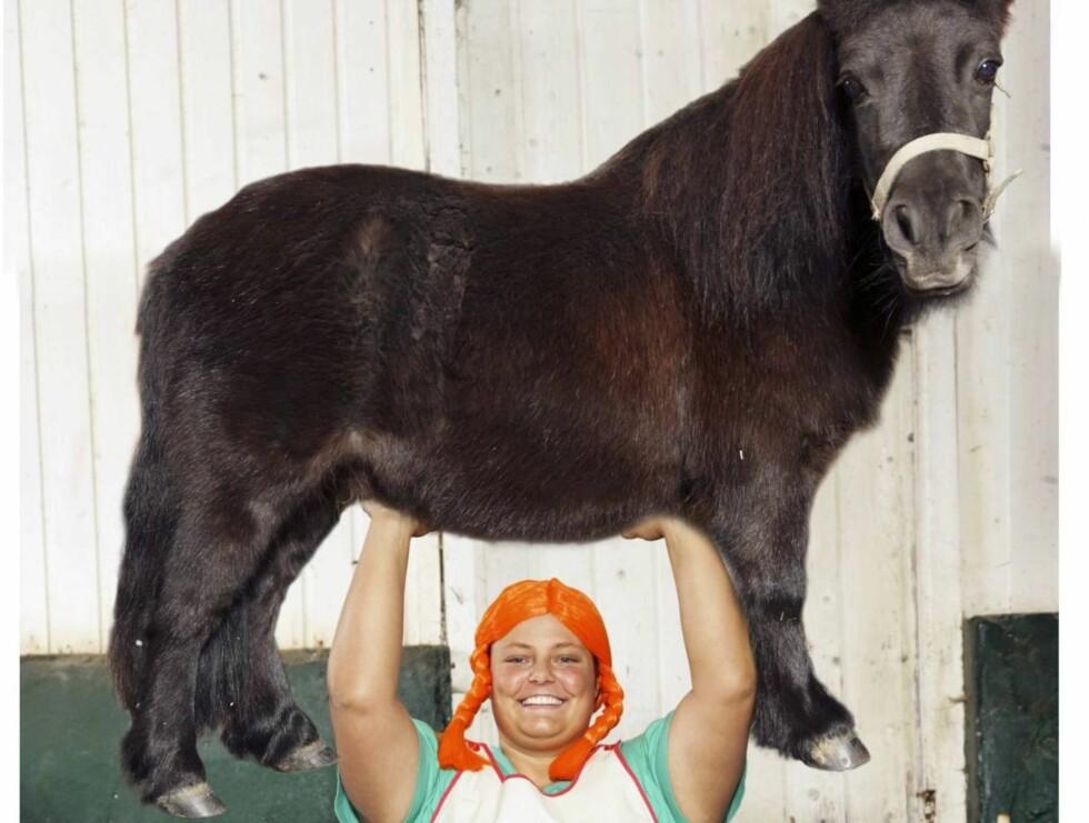 """STERK JENTE: 23 år gamle Hildeborg har ingen problemer med å løfte hester som """"Mini"""" fra Stall Farmen på Lierskogen. (Bildet er manipulert). Foto: Se og Hør"""
