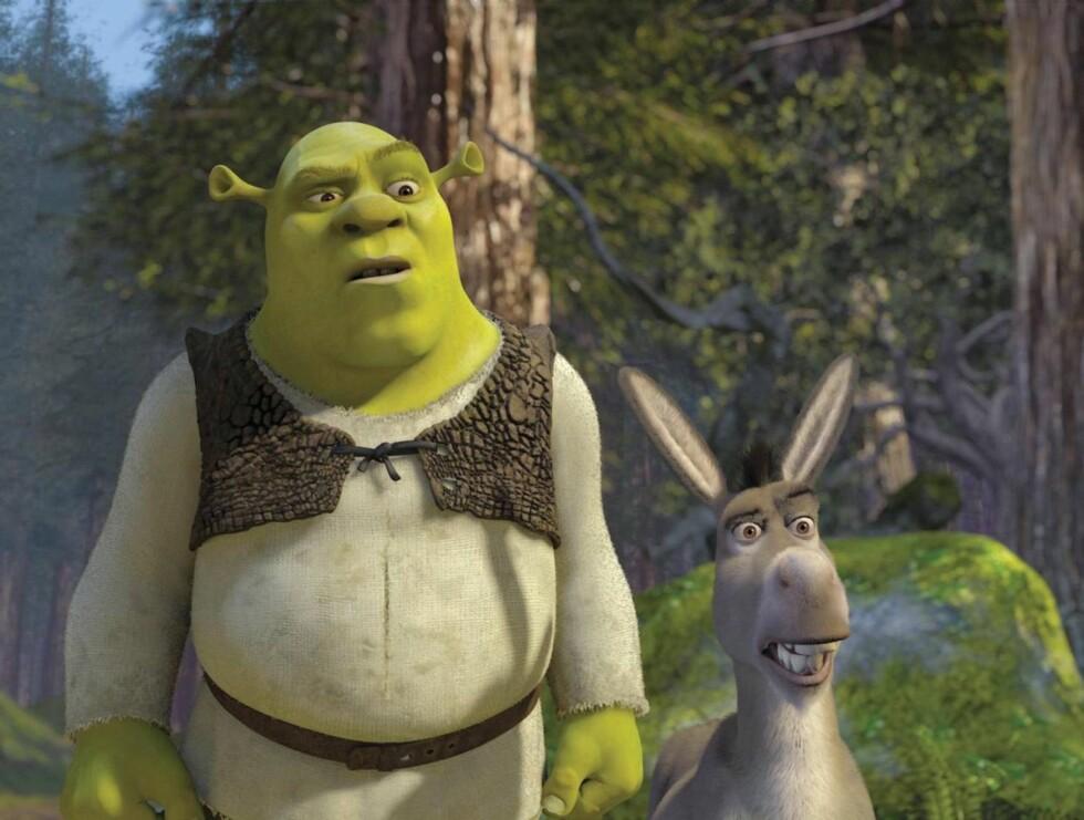 """UT PÅ TUR: Shrek og hans trofaste esel må igjen ut på eventyr i """"Shrek 3"""". Foto: filmweb"""