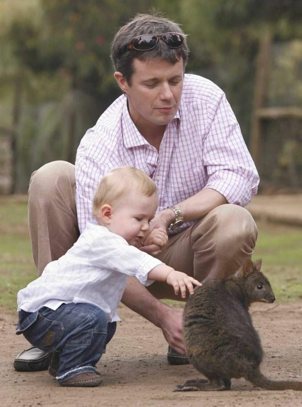 KOSESTUND: Christian var ikke redd for å klappe kenguruen. Foto: Stella Pictures