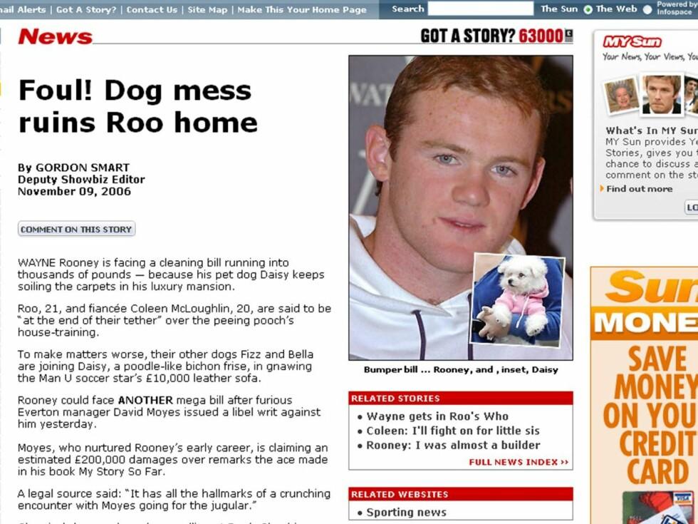 PROBLEMBIKKJE: Den lille hunden Daisy skaper problemer for Wayne Rooney. (Faksimile fra The Sun) Foto: Faksimile Sun