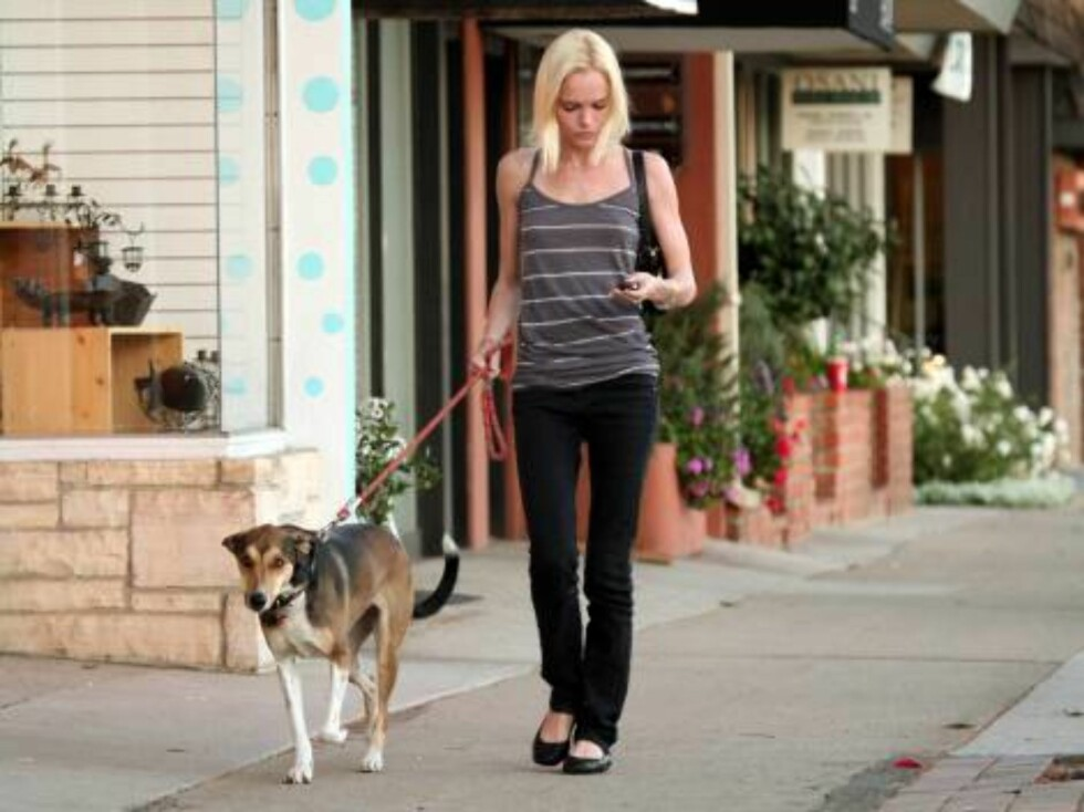 Kate Bosworth walking her greyhound dog Nov 28, 2006 X17agency exclusive Foto: All Over Press