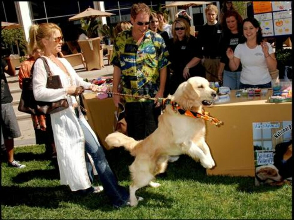 Nicollette Sheridan has problems handling her dog Oliver during the kick off party for National Dine with your Dog Day, held at the Hyatt Regency Century Plaza Foto: Stella