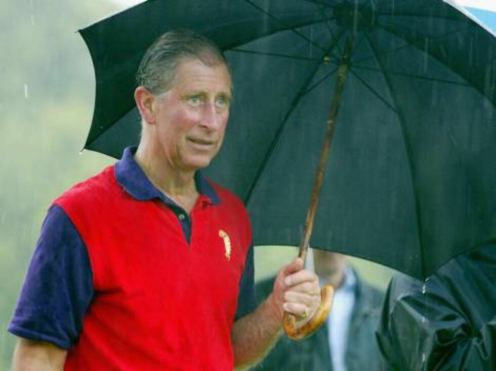 WILTSHIRE, ENGLAND - JULY 10:  Prince Charles accepts his prize in the pouring rain in the annual Army v Navy match for the Rundle Cup at Tidworth Polo Club on July 10, 2004 in Wiltshire, England.  (Photo by Carl De Souza/Getty Images)      / ALL OVE Foto: All Over Press
