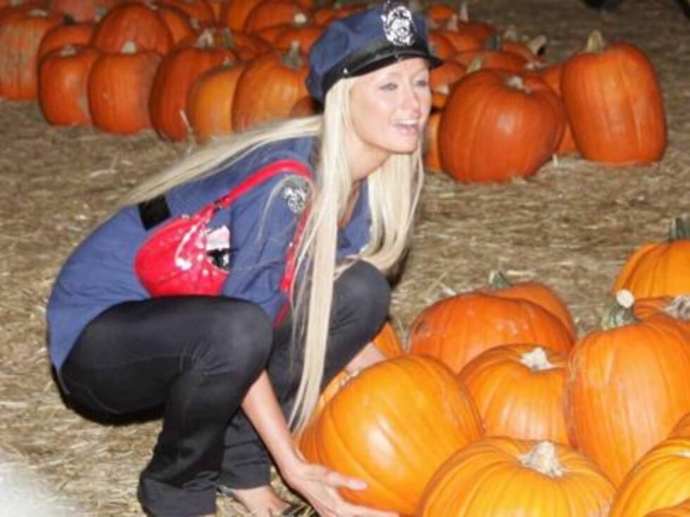 Code:X17XX8-Blanco/Sanchez, California,USA, 29.10.2004: Officer Paris  (Model/ Actress Paris Hilton) picks up a pumpkin at the Halloween pumpkin patch -- presumably on her way to a Halloween party.  The Hilton hotel heiress dressed in tight spandex pants Foto: All Over Press