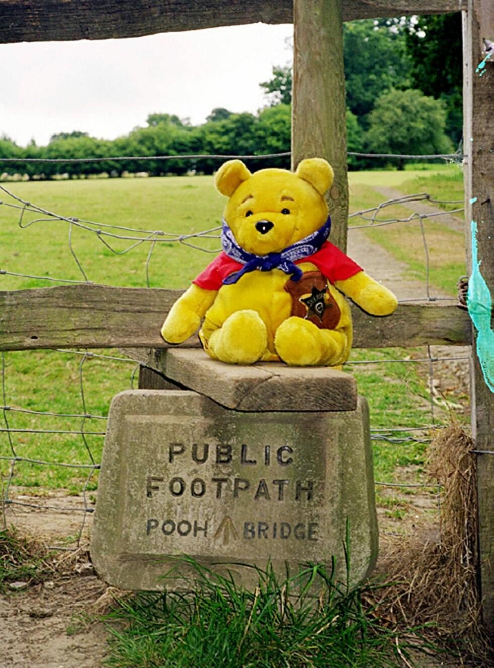 JUBILANT: Denne helgen fyller Ole Brumm, verdens mest elskede og berømte bamse, 80 år. Her er jubilanten på vei til Brummpinnebroen i Ashdown Forest. Foto: Helle Øder Valebrokk
