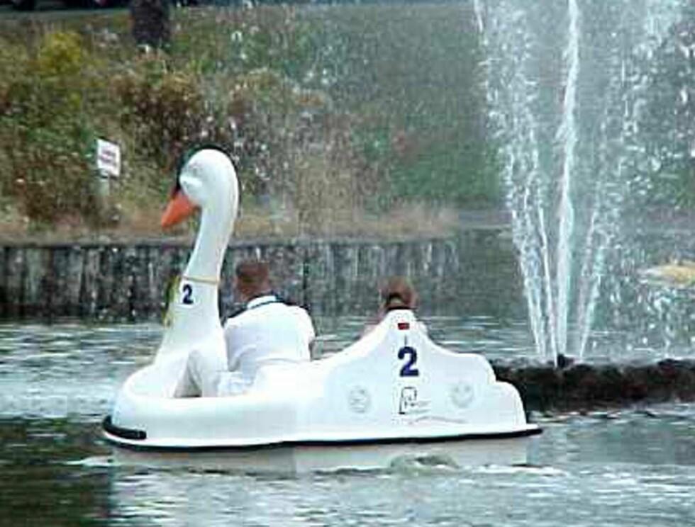 BÅT: Det er en båt av dette slaget fuglen har falt pladask for. Foto: AP/Scanpix