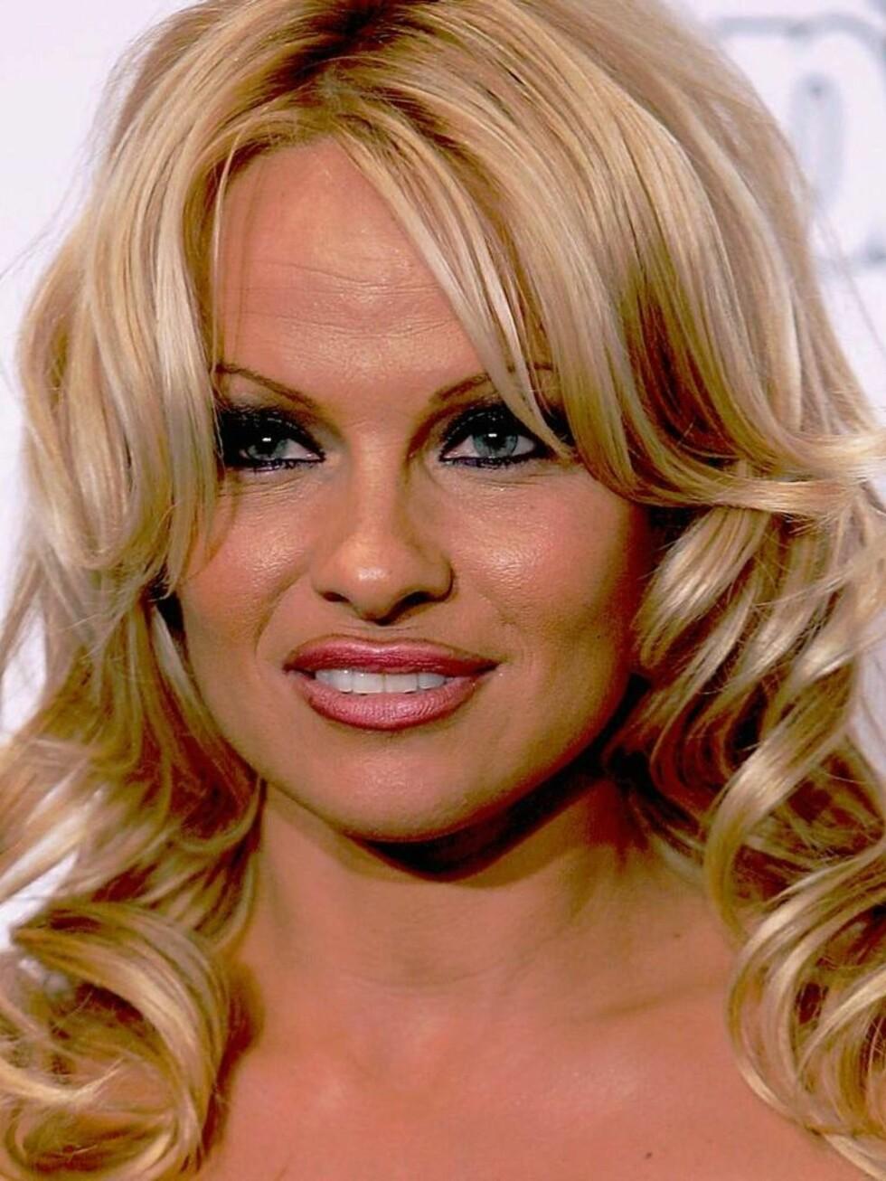 NAKEN: Egentlig ville forfatteren bruke et nakenbilde modellen og skuespilleren Pamela Anderson. Foto: All Over Press