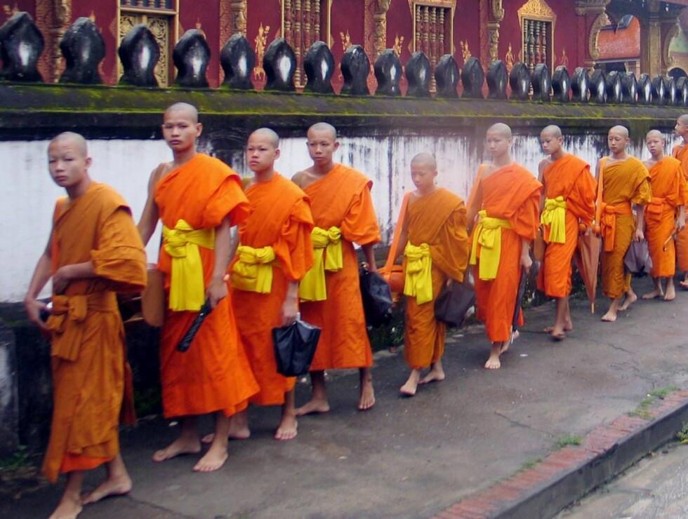 PÅ REKKE OG RAD: Hver morgen kommer de unge buddhistmunkene ut fra de mange templene i Luang Prabang - for å motta ris fra befolkningen. Foto: Thomas L. Røyert/Se og Hør