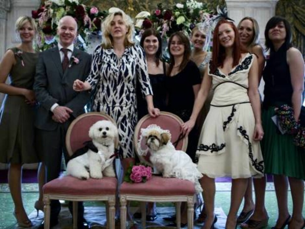 London 2006-09-12  Dog Wedding of Muffin (Shih Tzu) & Timmy (Bichon Frise) at Harrdos.   Pic shows: The bride, groom and friends.   Photo: David Graham/UPPA/Photoshot  Code:4034/ UDG023602  COPYRIGHT STELLA PICTURES Foto: Stella Pictures