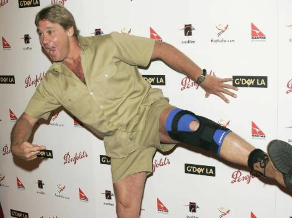 """Det var ikke sjeldent at Irwin ble skadet under innspillingen av tv-serien hans, """"Krokodillejegeren"""". Foto: All Over Press"""