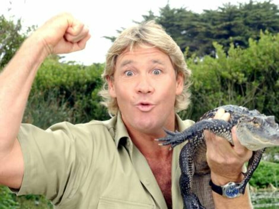 """SAN FRANCISCO - JUNE 26:  ***EXCLUSIVE*** """"The Crocodile Hunter"""", Steve Irwin, poses with a three foot long alligator at the San Francisco Zoo on June 26, 2002 in San Francisco, California. Irwin is on a 3-week tour to promote the release of his first fea Foto: All Over Press"""