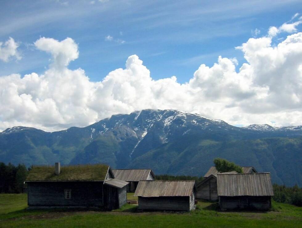 """IDYLL: """"Farmen"""" er kjent for å spilles inn i idylliske omgivelser. Her er Øvre Haukås gård fra 2004. Foto: TV2"""