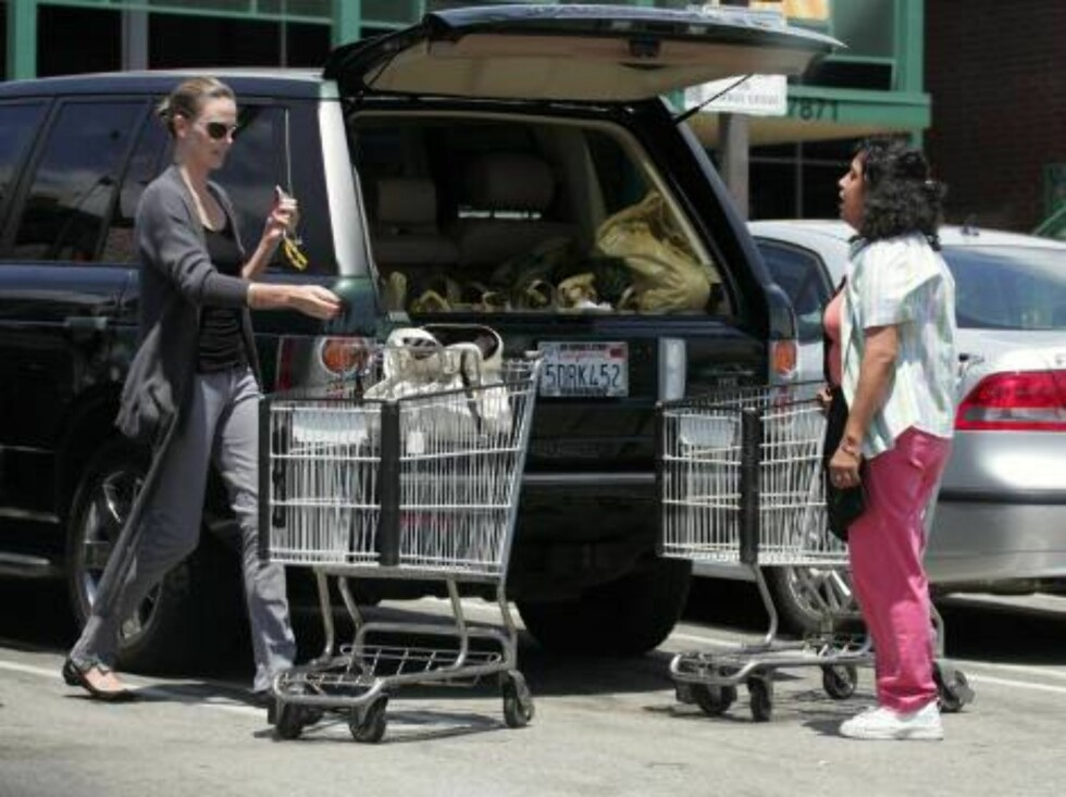 Charlize Theron goes on a grocery shopping bonanza! The actress spent almost three hours in a whole foods store.   Ref: JLLA 310706 A EXCLUSIVE   Splash News and Pictures Los Angeles:310-821-2666 New York:212-619-2666 Foto: All Over Press