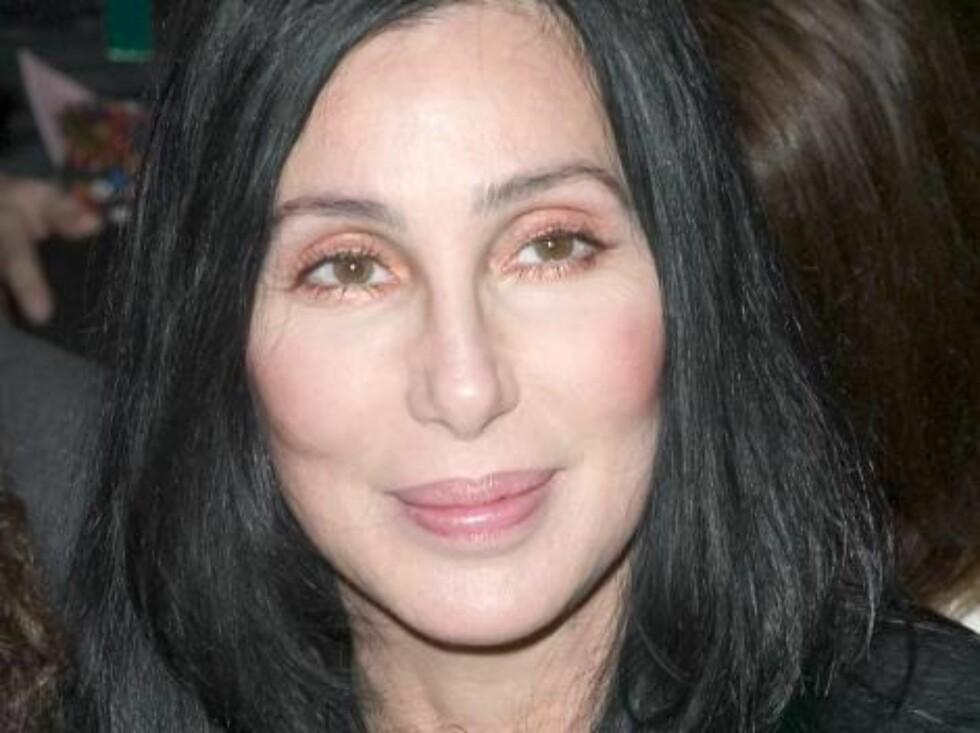 STRAM I MASKA: Artisten Cher (60) elsker å pusse opp både hus og seg selv... Foto: Stella Pictures