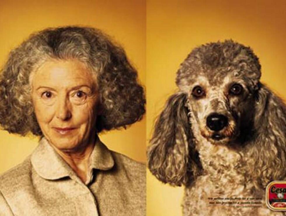 SAMME FRISØR: Denne damen har stylet hunden etter egen smak...