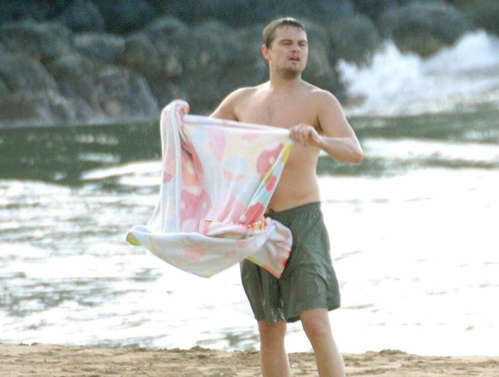 TØRK: Leo like etter å ha svømt om kapp med Tobey. Foto: STELLA PICTURES