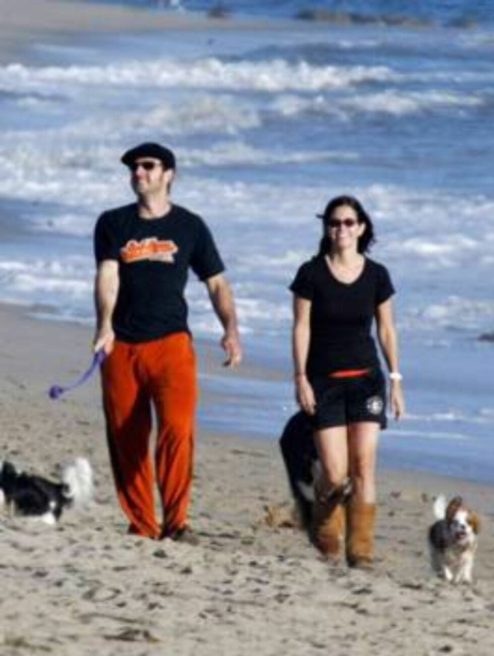 """A pregnant Courteney Cox with husband David Arquette and their dogs, taking a walk on the beach in Malibu.  She's just barely starting to show a small belly.  Cox recently announced she's pregnant after years of trying and numerous miscarriages.  The """"Fri Foto: All Over Press"""