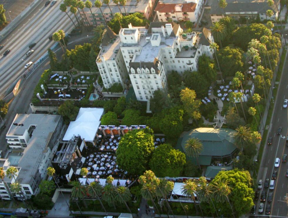 STORT: Flyfoto fra kjendiskirkens feiring lørdag. Foto: Stella Pictures