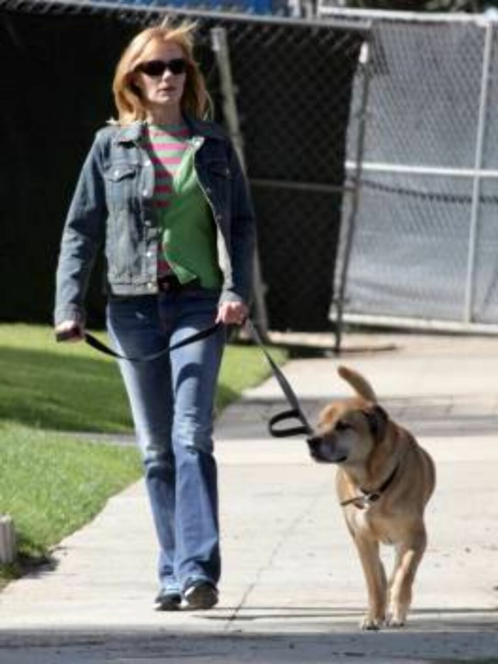 CSI star Marg Helgenberger walking her dog in Santa Monica. March 7, 2006 X17agency EXCLUSIVE / ALL OVER PRESS Foto: All Over Press
