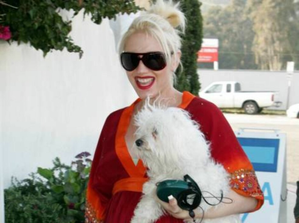 Gwen Stefani visiting greek restaurant Taverna Toni in Malibu with her white dog. April 30, 2005 X17agency exclusive / ALL OVER PRESS Foto: All Over Press