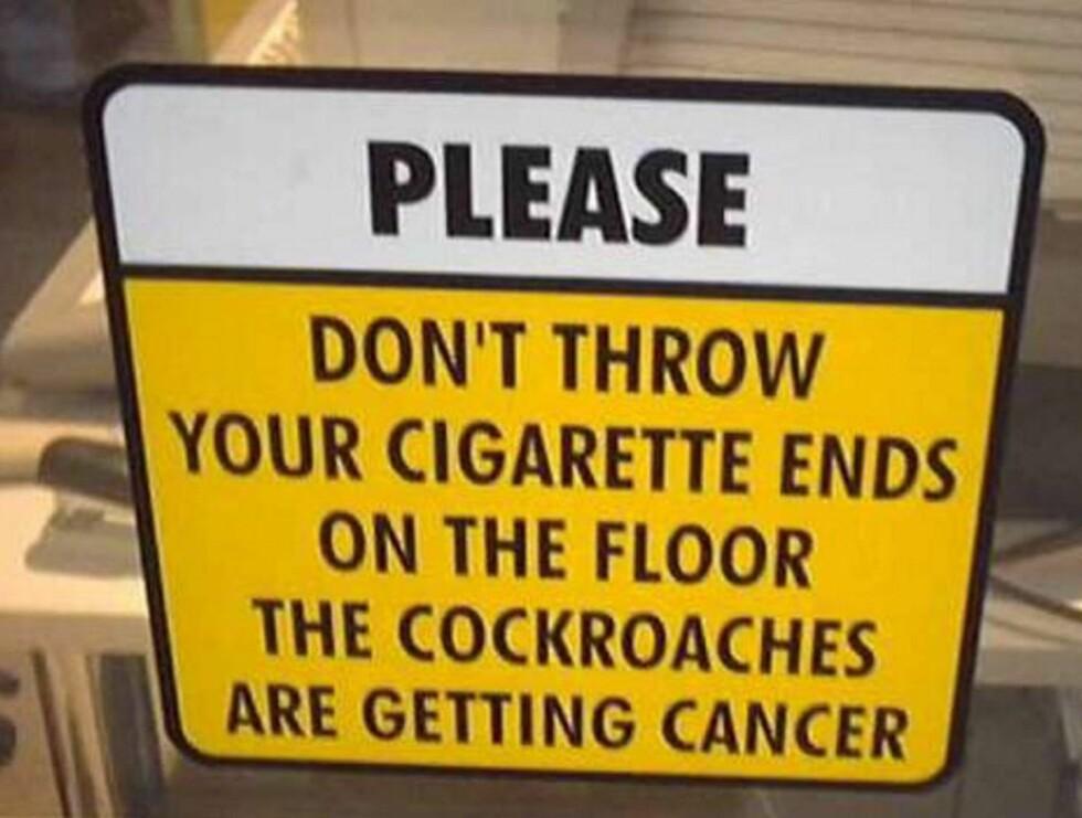STAKKARS... Kakerlakkene kan få kreft av sneiper....